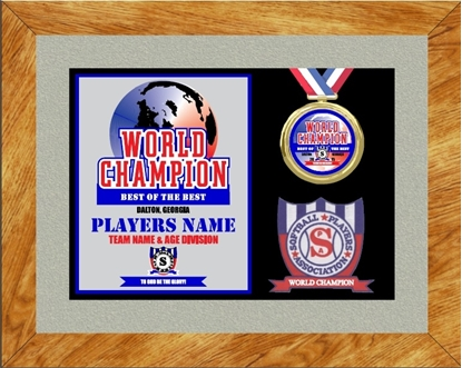 Picture of World Champion Custom Frame Award